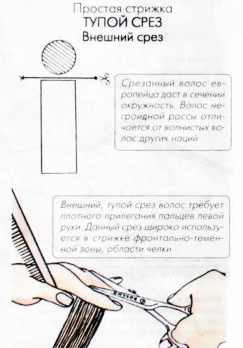 568355-shema_8-349x500.jpg