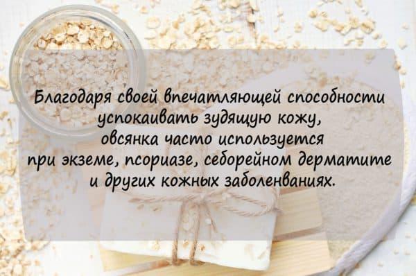 ovsyanka-dlya-prigotovleniya-skrabov-600x398.jpg